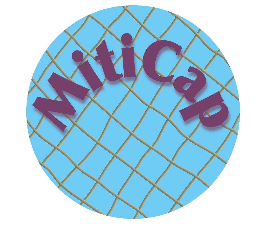MITICAP2