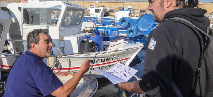 ZEPAMED - trabajo en puertos