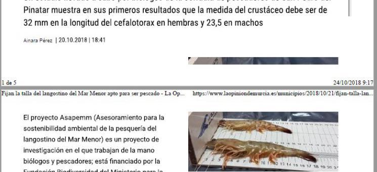 2018-10-21_Noticia de ASAPEMM en La Opinión de Murcia