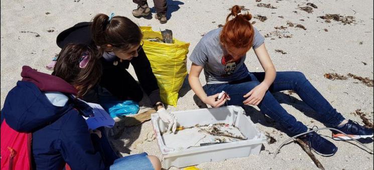 Limpieza de basuras marinas en Sálvora