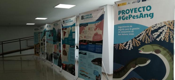 Exposición del Proyecto Gepesang
