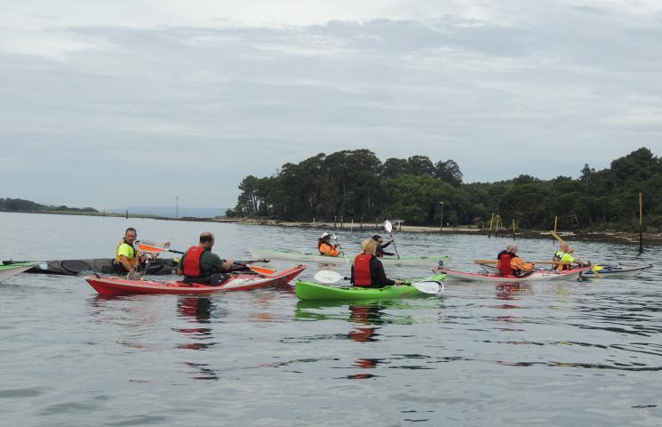 II Red para la recuperación de los ecosistemas marinos en el PNMT das Illas Atlánticas de Galicia