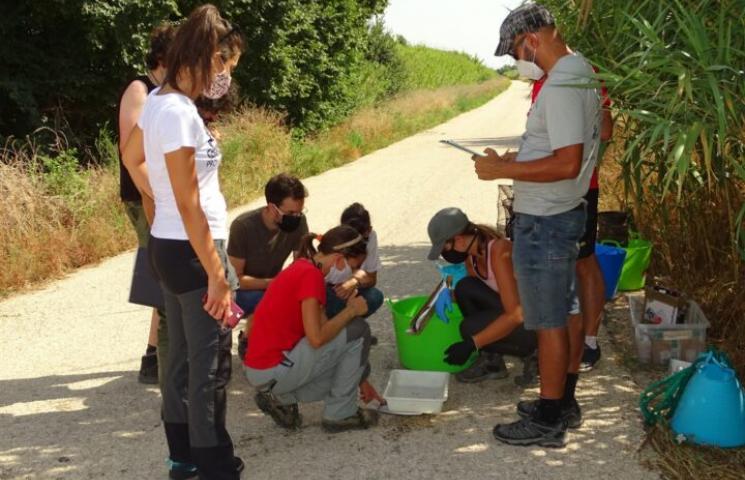 Grupo de voluntariado participando en la toma de medidas de anguila europea.