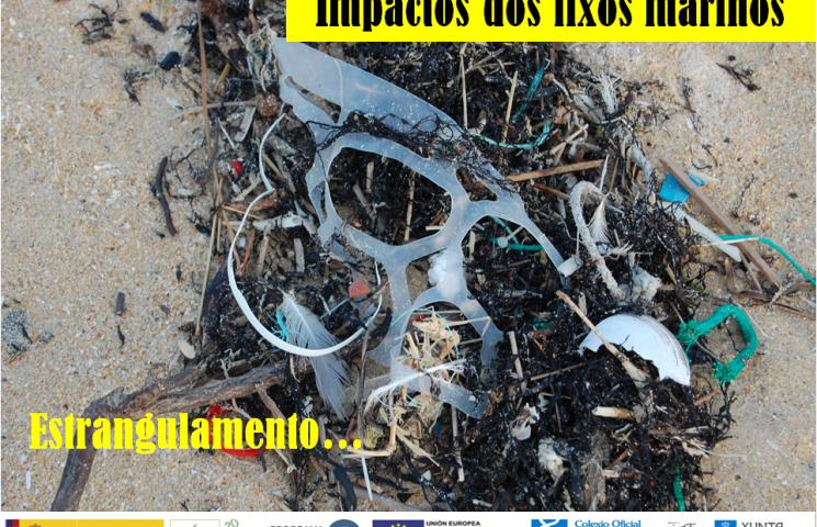Impactos de las basuras marinas