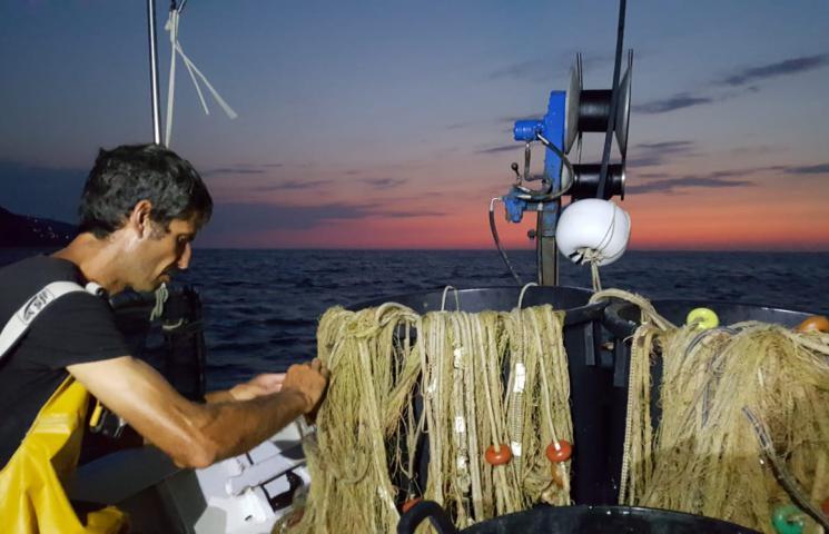 Jornada de pesca a bordo de la Pandilla, embarcación de artes menores de Palamós. Muestreos de salmonete Proyecto COFRAREDMED