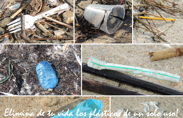 Elimina de tu vida los plásticos de un solo uso
