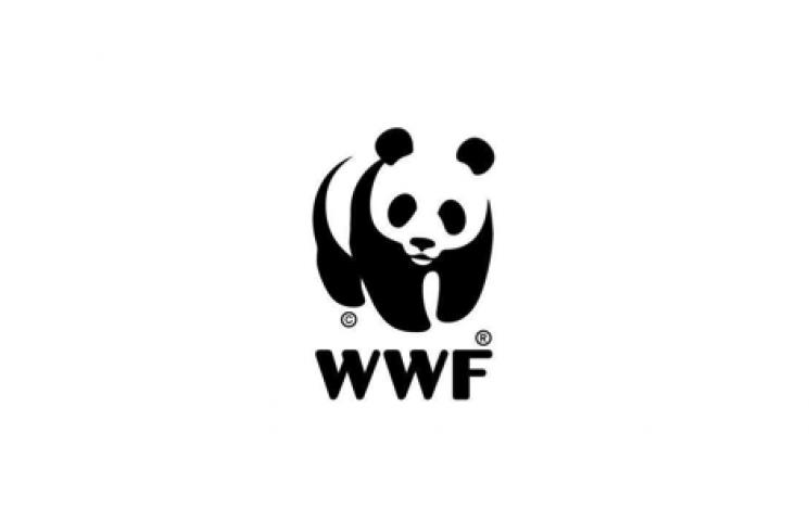 Logotipo ADENA WWF