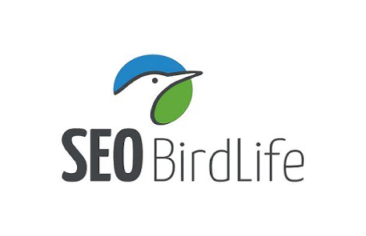 Logotipo SEO BirdLife