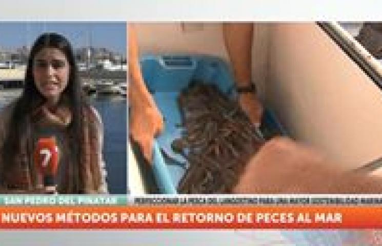 ASAPEMM en el informativo regional La 7 Región de Murcia