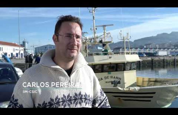 Las mejoras en el sistema iObserver se han probado en el buque oceanográfico Miguel Oliver y en buques comerciales