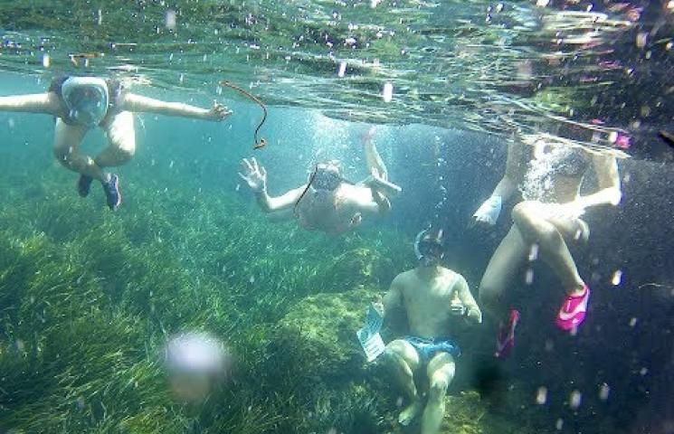 Increíbles fondos sumergidos en Isla Plana el 11 de julio