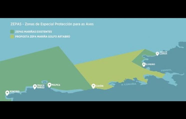 Vídeo divulgativo del proyecto Aves_Ártabras